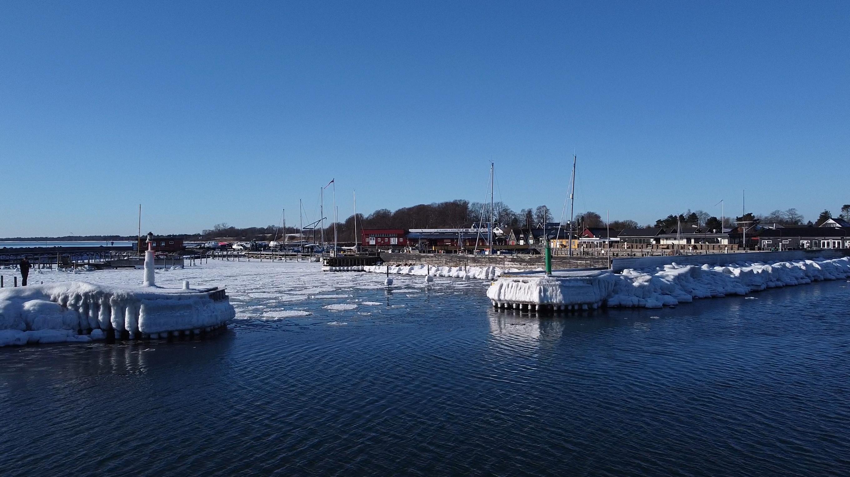 01-Einar-Havn-Feb-01a